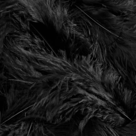 Plumes de dinde - Couleur noire