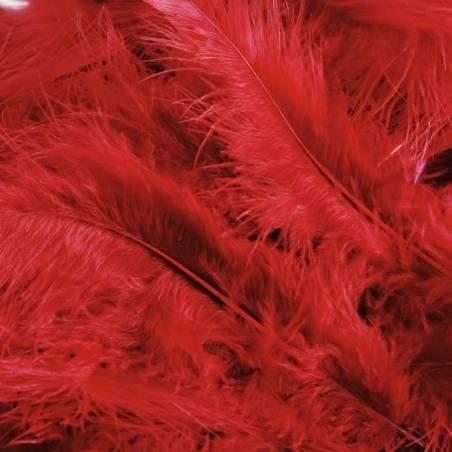 Plumes rouges triees de dinde 100gr
