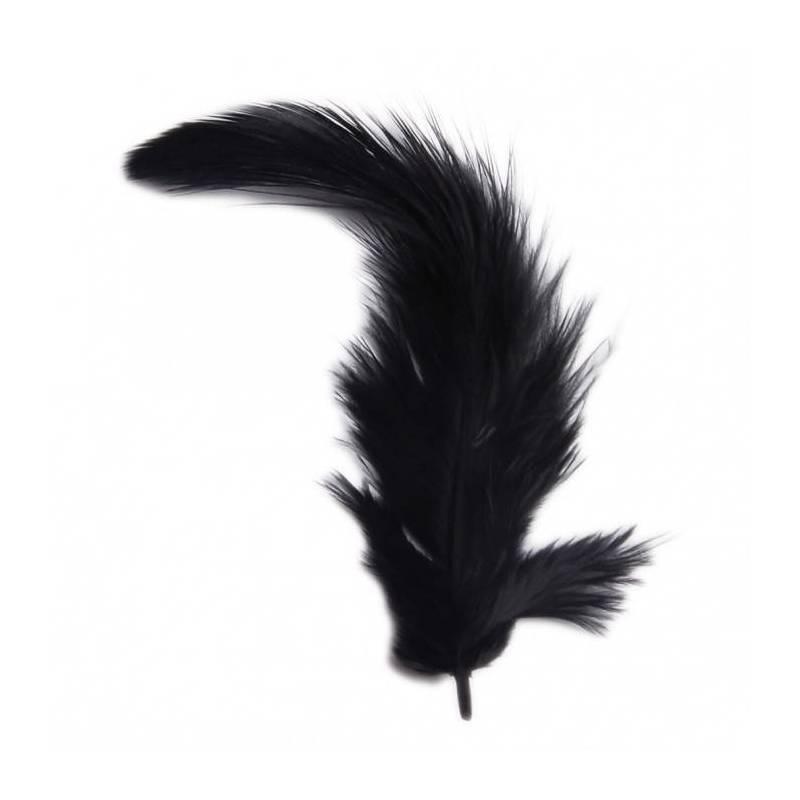 20 plumes noires-2g 9cm