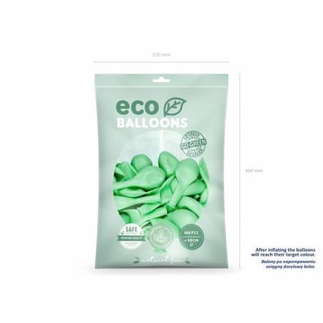 Ballons Eco 30cm menthe