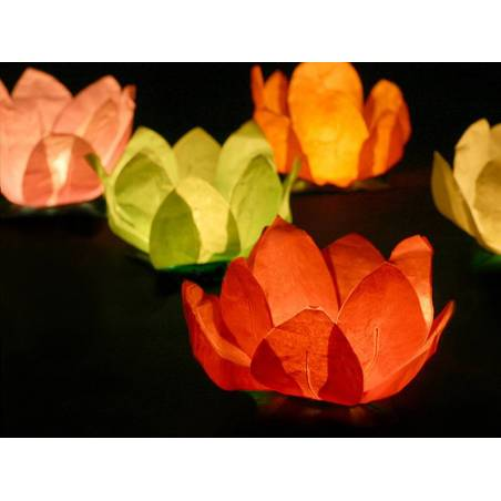 Lanternes flottantes mélange 29cm