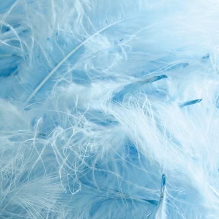 Plumes de dinde - Couleur bleu