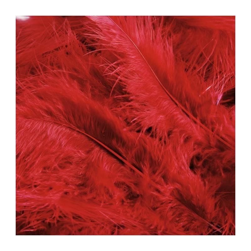 Plumes de dinde - Couleur rouge